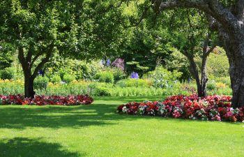 Landscape Design Alpharetta GA